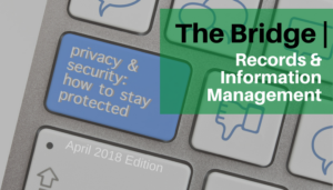 "<span class=""entry-title-primary"">The Bridge</span> <span class=""entry-subtitle"">Privacy & Security: How to Stay Protected</span>"