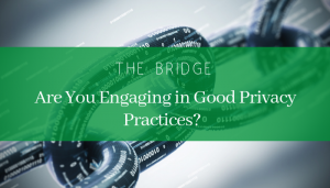 "<span class=""entry-title-primary"">The Bridge</span> <span class=""entry-subtitle"">Are You Engaging in Good Privacy Practices?</span>"